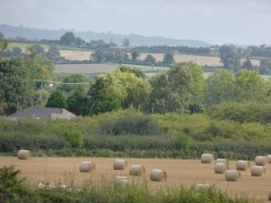 The West Herefordshire Landscape (N. Geeson)