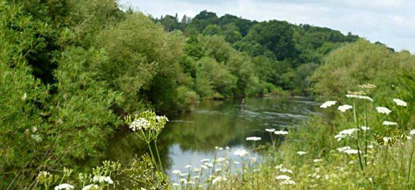 River Wye at Breinton